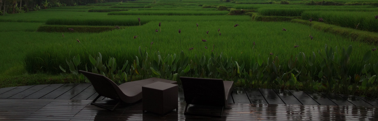 The rice terraces of ubud bali the simple reflections for Terrace ubud bali